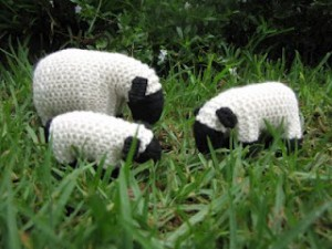 wooly ealkabout